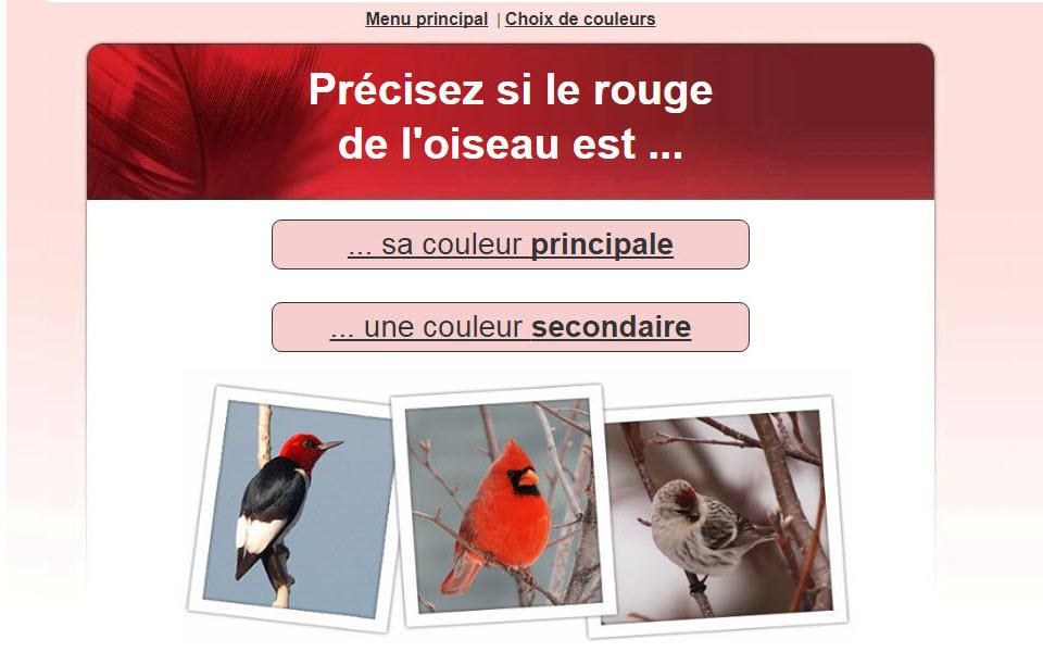 identifier oeufs oiseaux